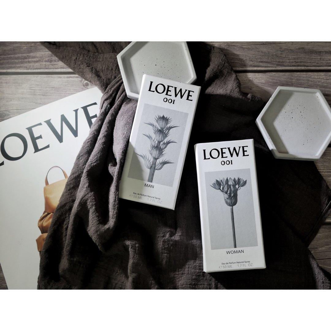 Loewe 罗意威