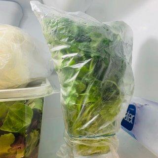 香菜可以保存一個月之久❗️❓...