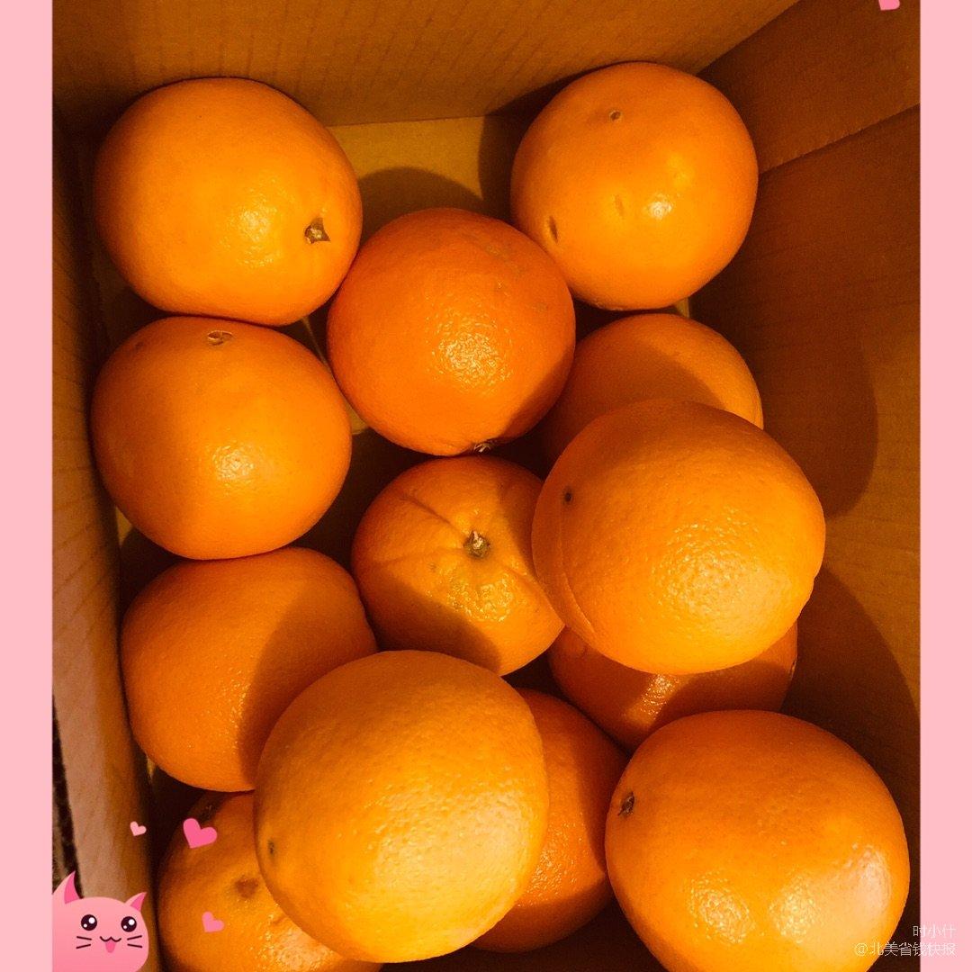 🍊🍊🍊来吃甜橙呀