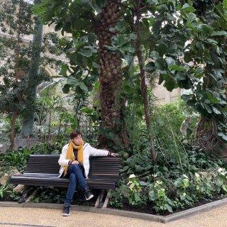 伦敦工作喜欢旅游摄影吉他欧洲艺术古典乐博...