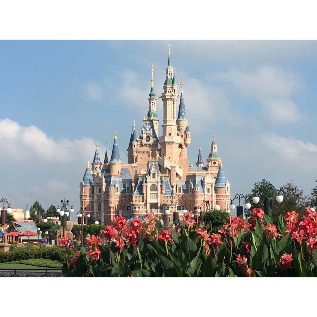 """迪士尼乐园🎠—充满欢乐的""""奇妙世界"""""""