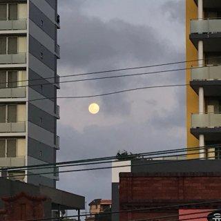 晒个月亮🌕