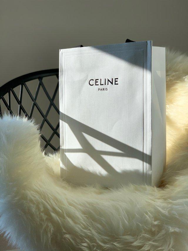 Celine Nano 鲶鱼包
