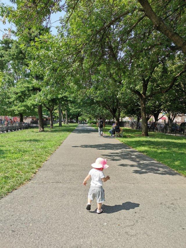波波池无开门,唯有带小妹去公园溜溜...