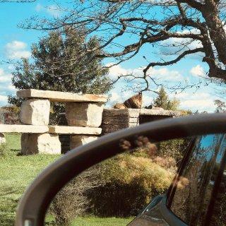 野生动物园 秋季出游🍂 拍照打卡好去处📷...
