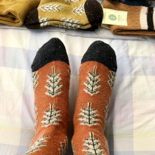 淘宝买的袜子🧦...