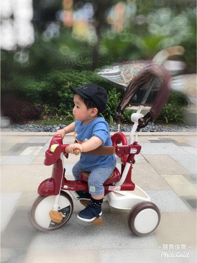 iimo三轮车, 爸妈孩子的时尚玩物