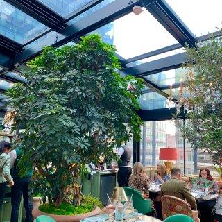 曼切斯特也有The Ivy网红下午茶☕️...