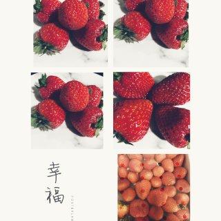 红通通的草莓🍓...