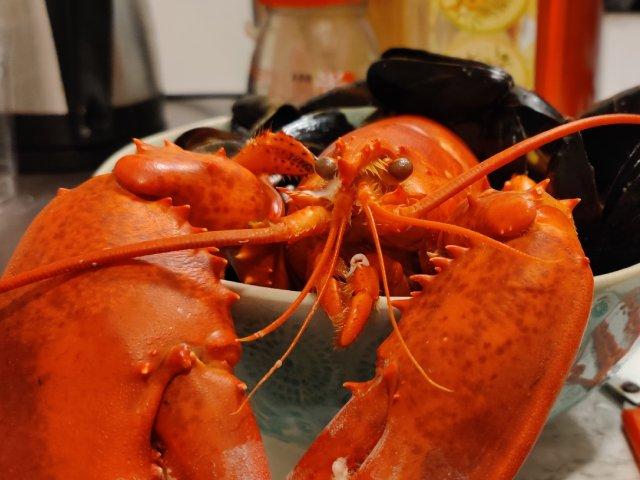 hmart买什么|吃吃吃吃吃龙虾~