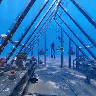 Cool~澳大利亚第一家海底博物馆MOU...