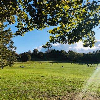 格林威治公园