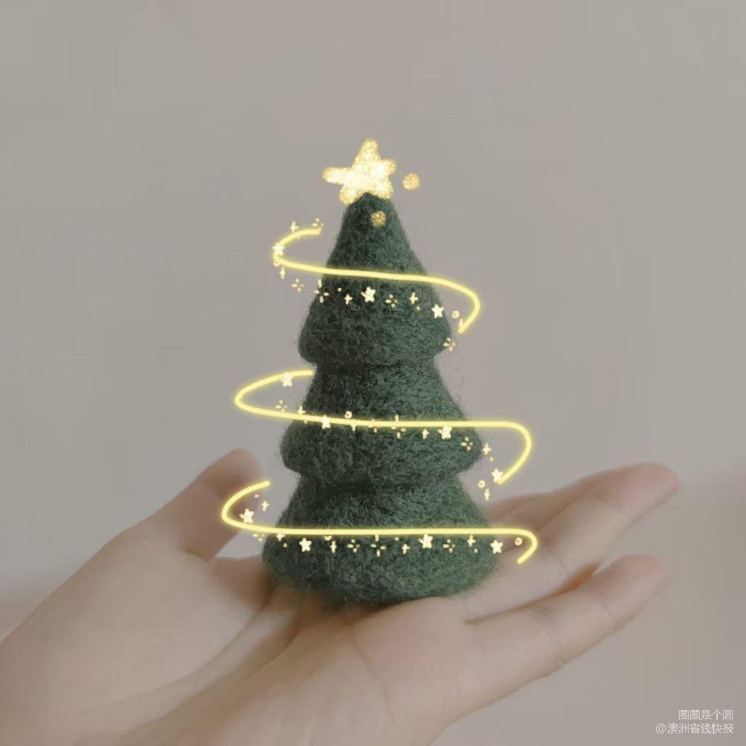 登登登 🎄圣诞树准备好啦...