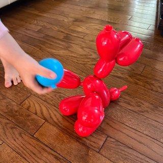 四月新玩具-让人忍俊不禁 Squeake...
