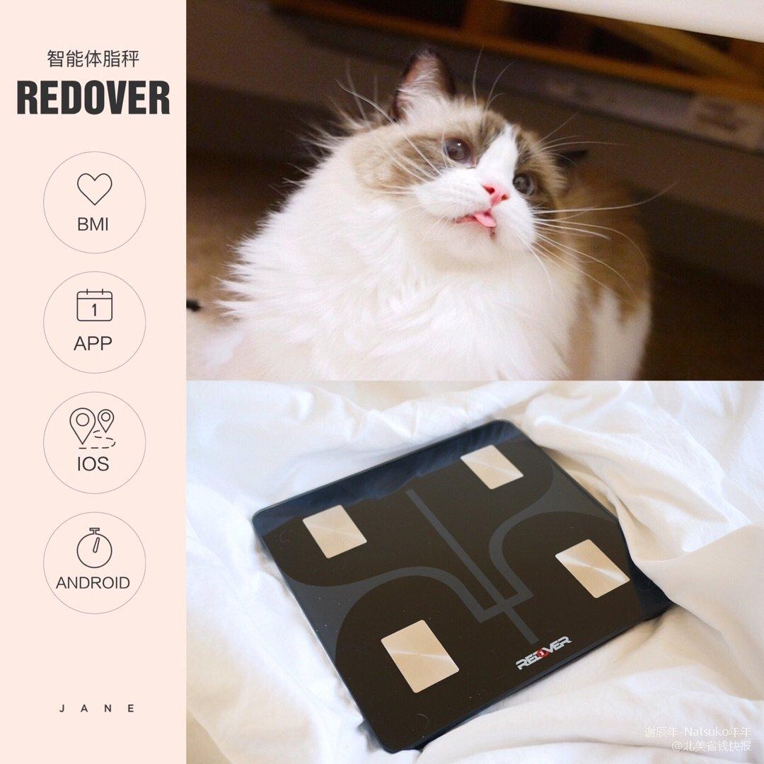 我竟然需要跟猫抢体重秤?【微众测】...