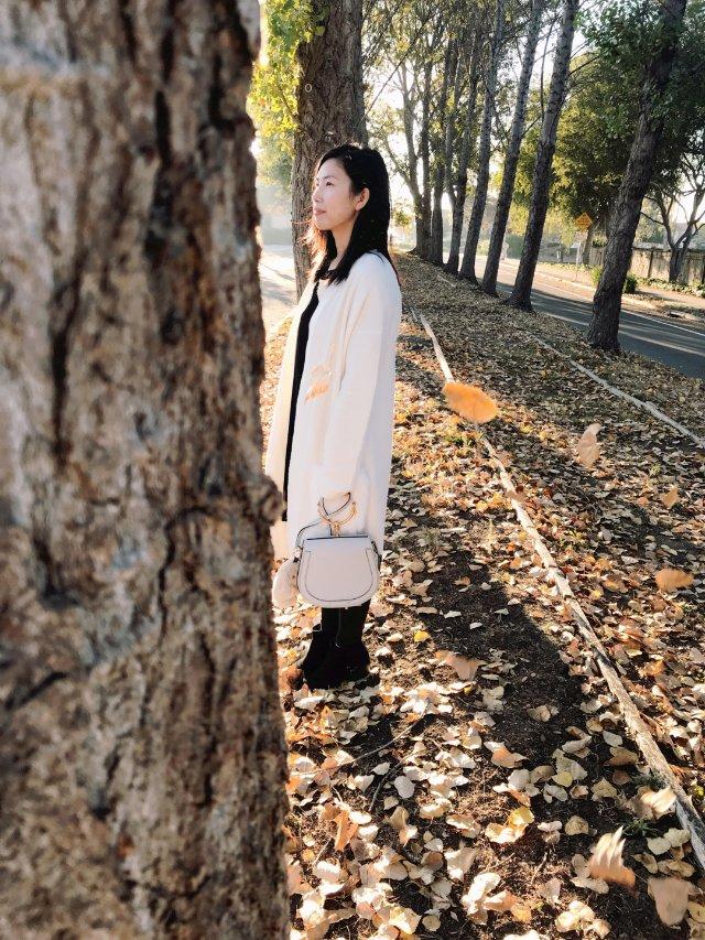 1⃣️1⃣️搭配|秋天的落叶🍂真美❗️