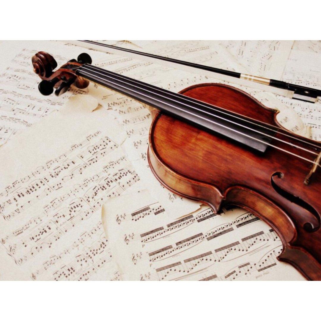 ✨小提琴🎻