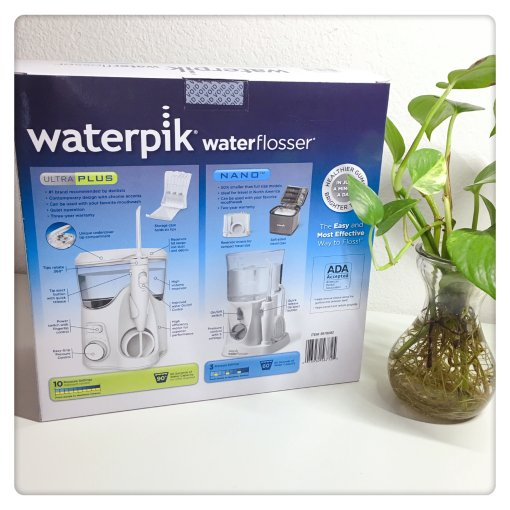 换个新的waterpik冲牙器