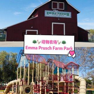 湾区遛娃|动物农场Emma Prusch...