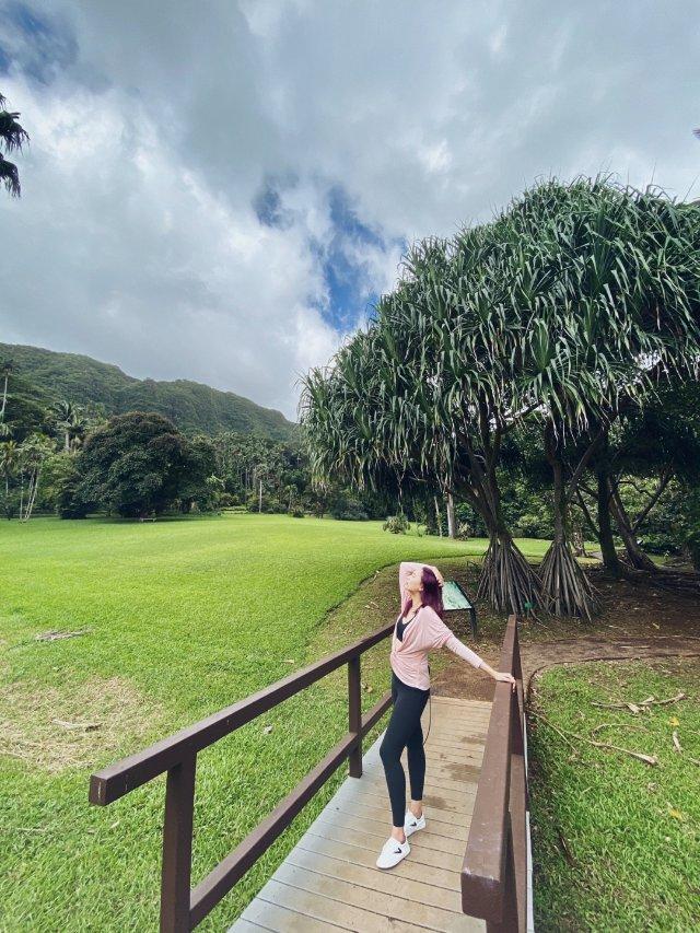【夏威夷度假3⃣️⛱️】