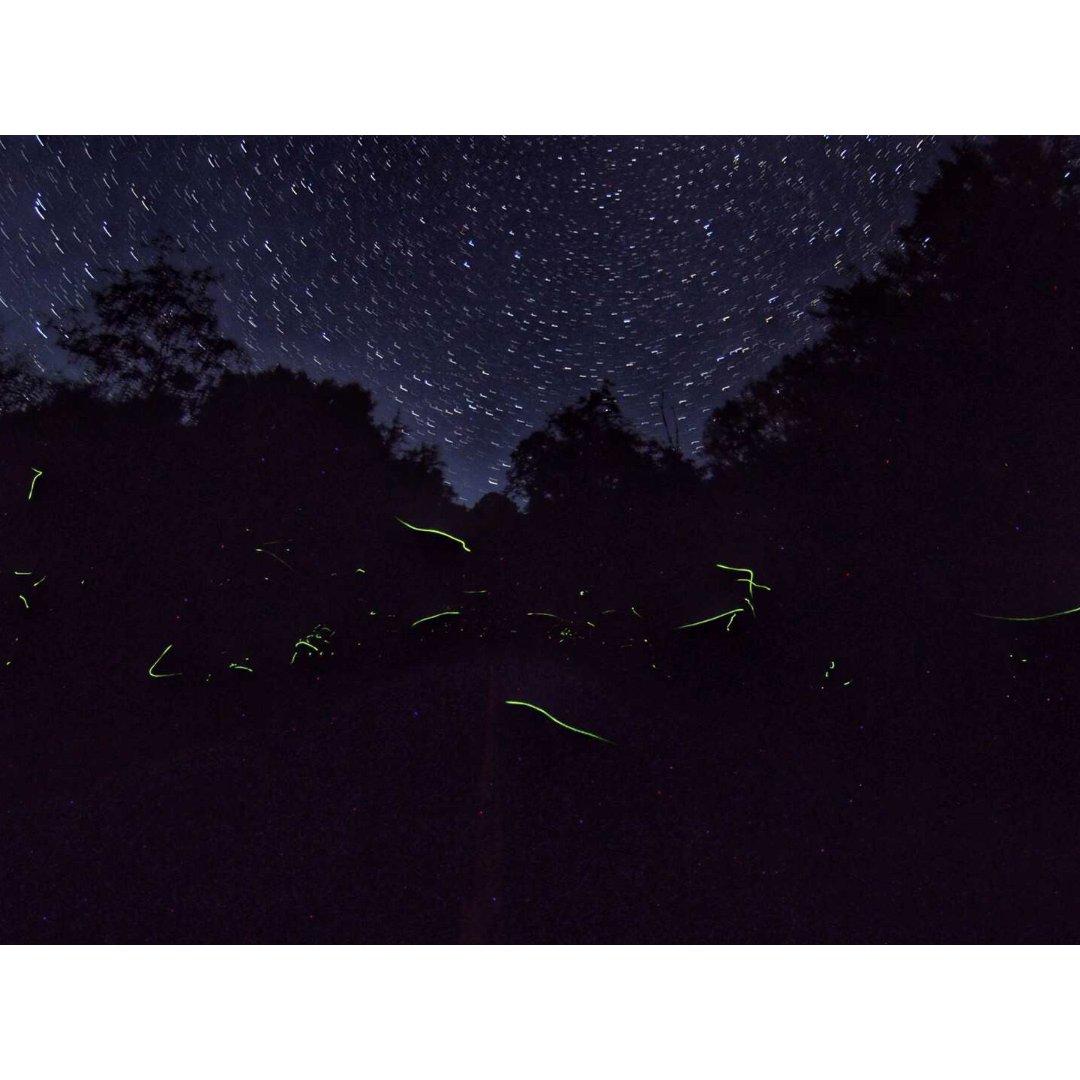 多伦多周边观星好去处🌟