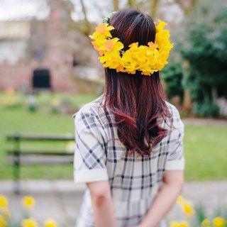 趁水仙花还在,赶紧去拍照吧仙女们!...