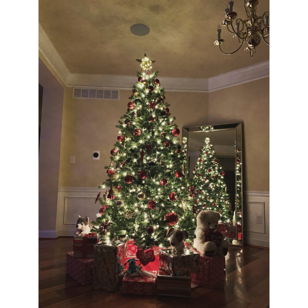 2019年的圣诞树🎄
