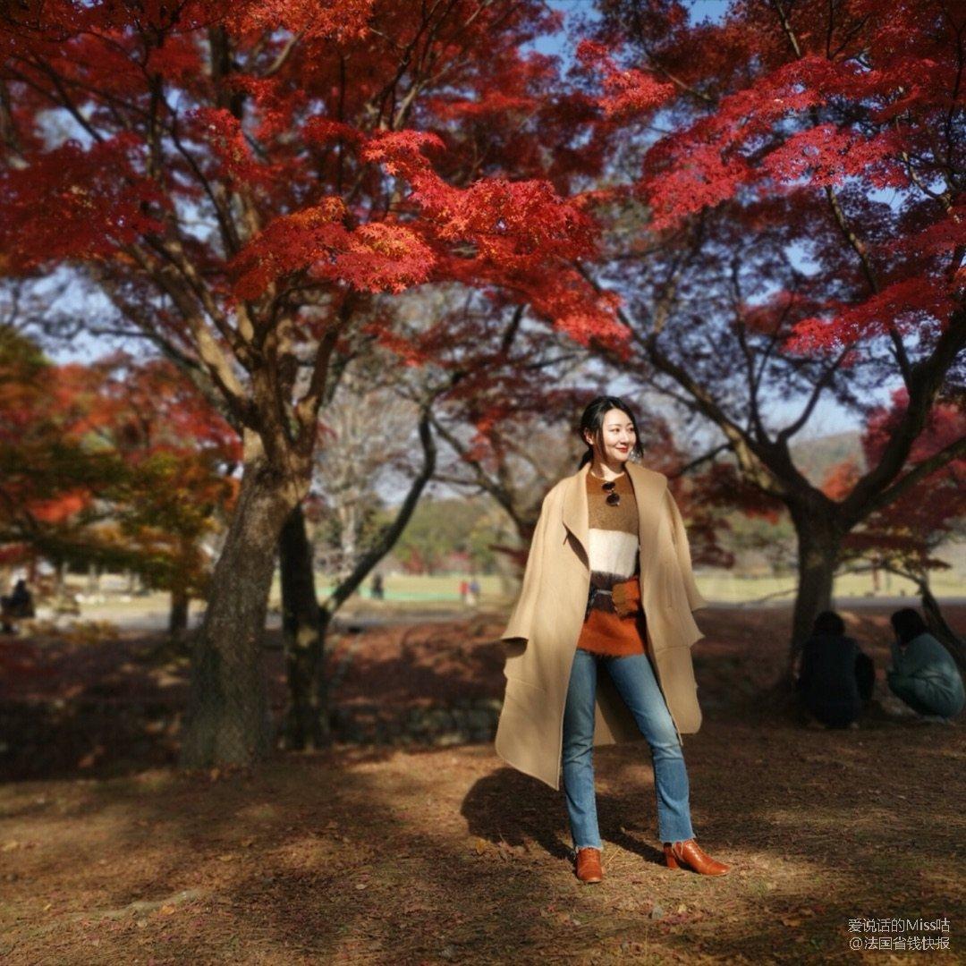 奈良公园的枫叶太美了!枫叶色穿搭🍁