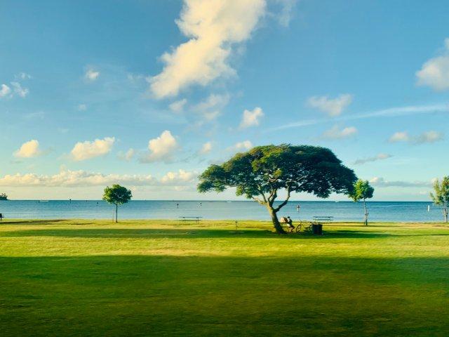 旅行记忆 | 回忆美丽的夏威夷Oahu岛