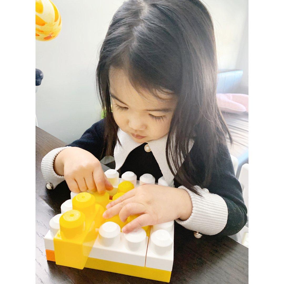 Mega Bloks/lego d...