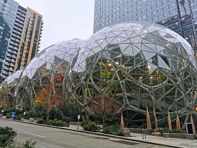 🌎西雅图🌿亚马逊丛林