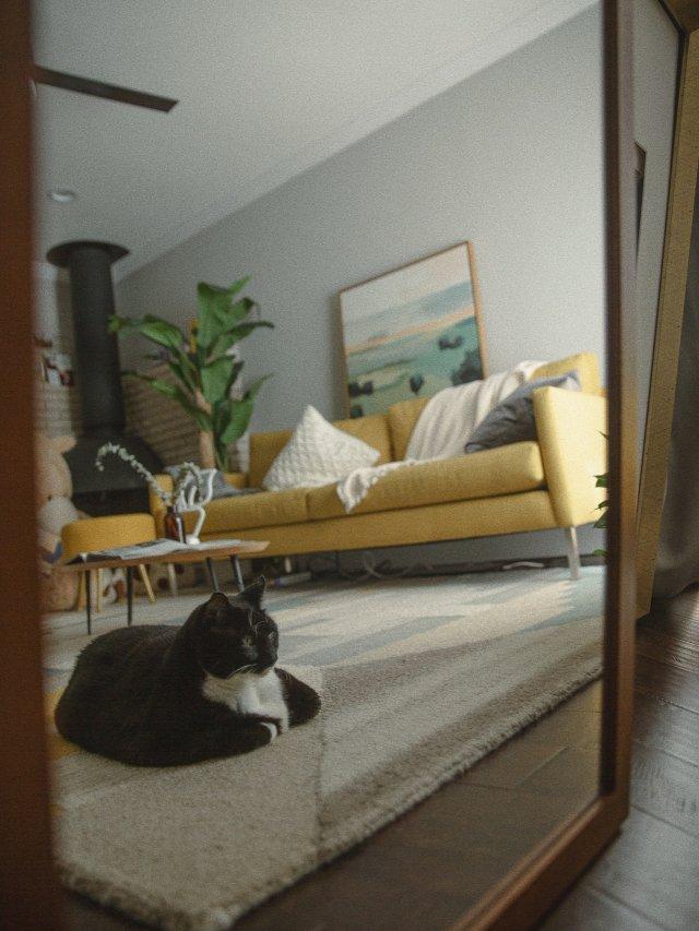 客厅🛋️ 加面镜子,换个角度看家
