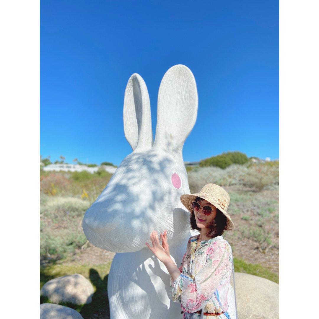 【一周穿搭】假日打卡兔子窝🐰