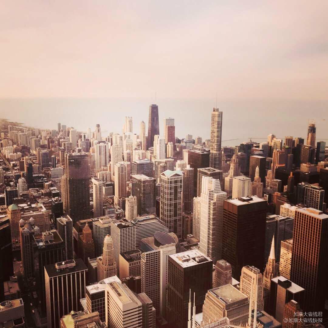 爱上芝加哥只需要一秒·登顶威利斯大...