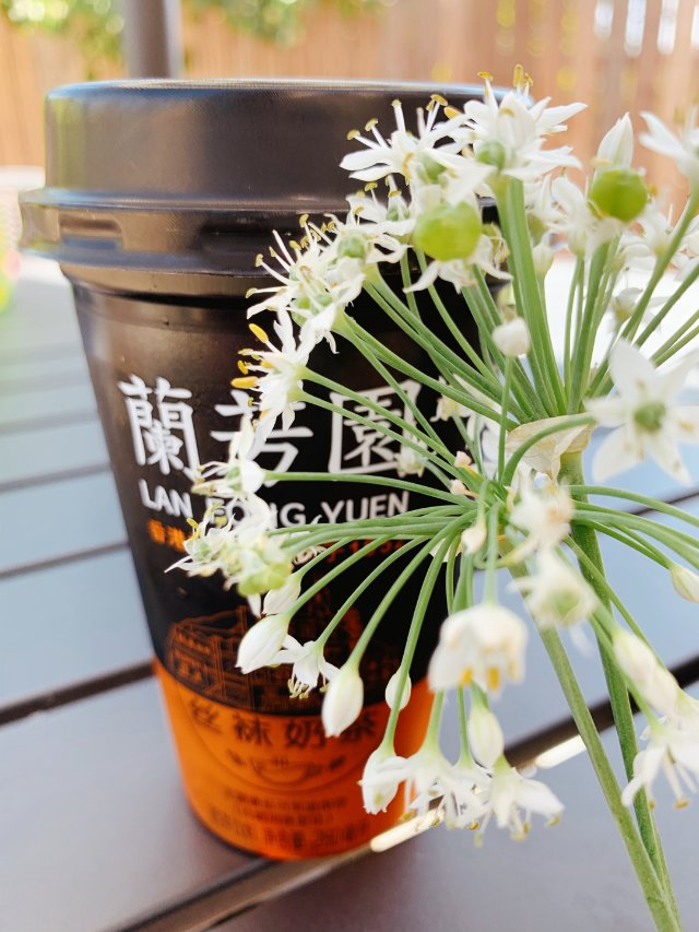比咖啡还提神的奶茶:兰芳园奶茶
