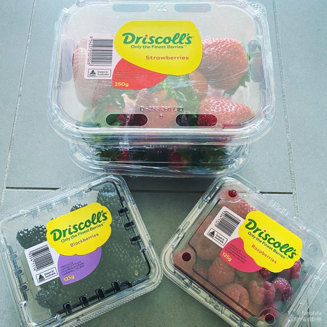 Barries🍓莓莓