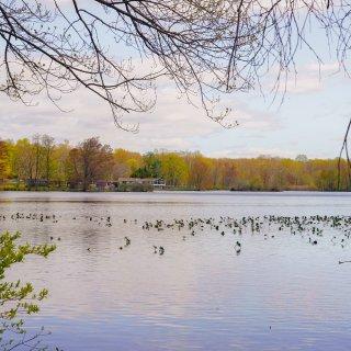 纽约周边 I 逃离城市计划,超治愈湖景...