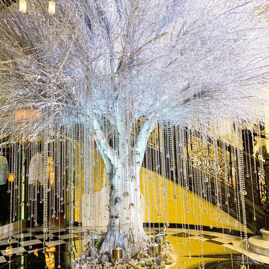 在伦敦赏圣诞树 |皇室最爱的 Cl...