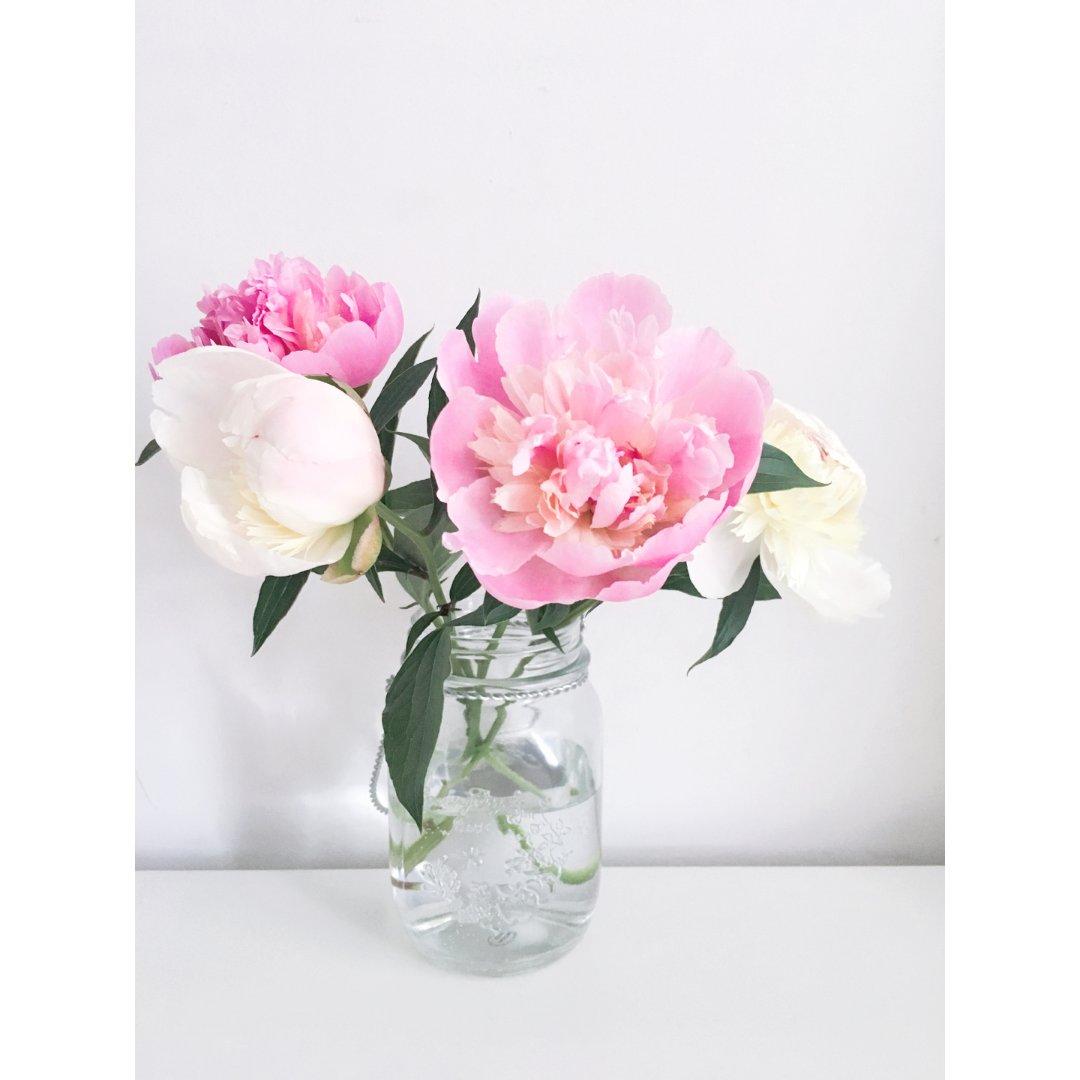 粉粉的花🌸🌸给生活添点小美好
