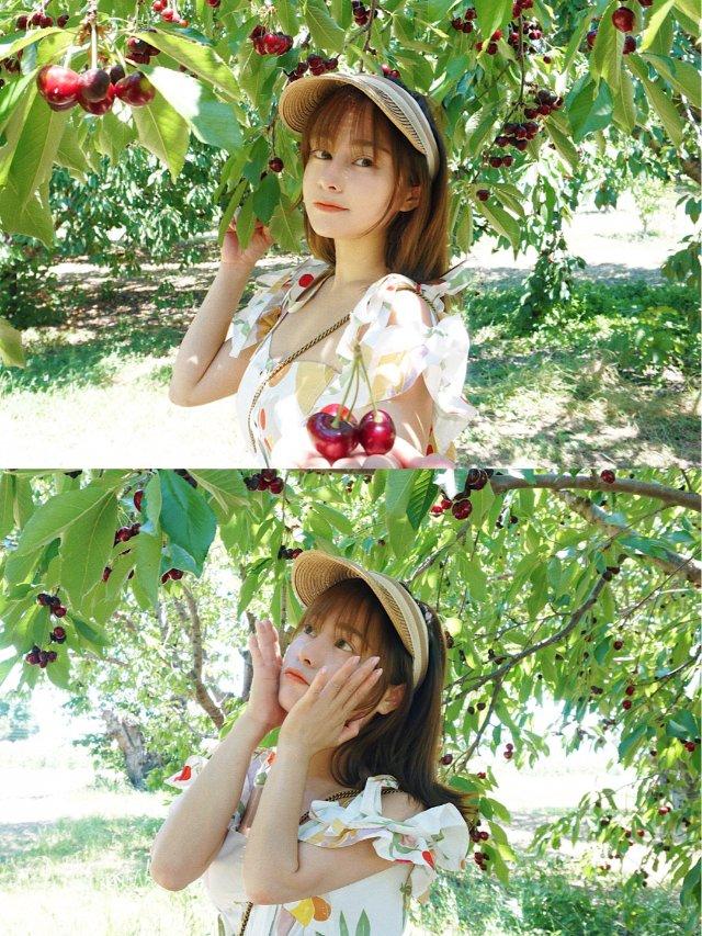 我又去摘樱桃啦!🍒🍒