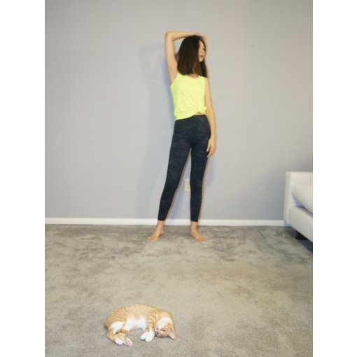 SPANX瑜伽裤的滋味 猫和你都想了解
