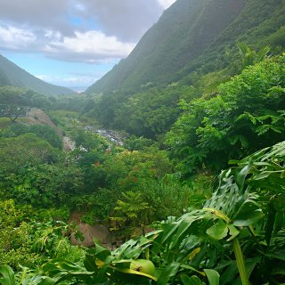 Iao Valley State Par...