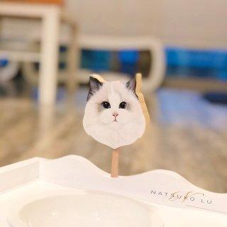 淘宝买什么:猫咪餐桌+仙女逗猫棒...