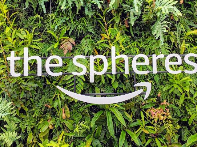 #西雅图旅游| the spher...