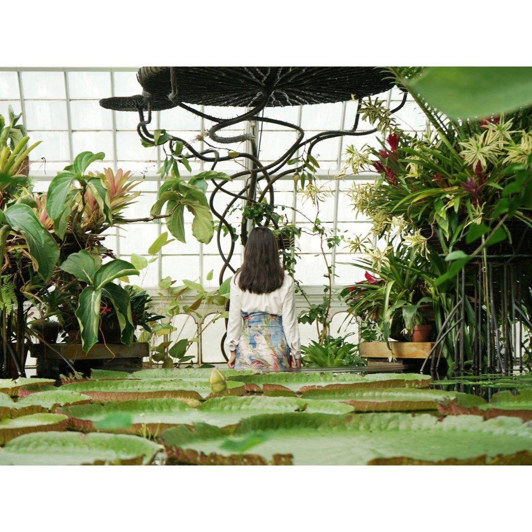 Conservatory of F...