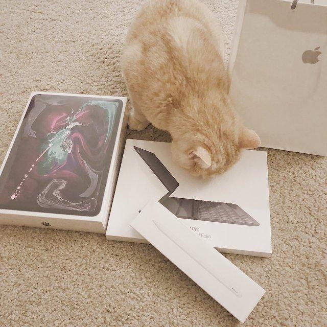 高效神器&最贵充电宝 iPad P...