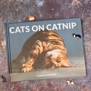 非常可爱、搞笑的一本影集,我推荐猫奴自留一本,爱猫人士...