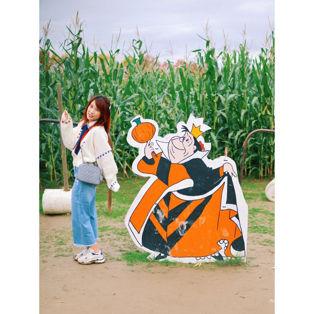 【西雅图玩乐】玉米迷宫南瓜农场撒欢玩