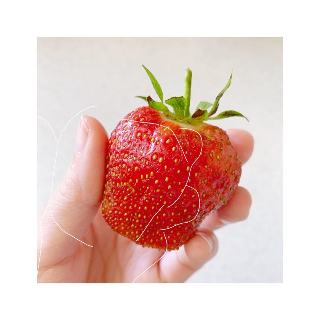 🍓奇奇怪怪大草莓🍓...