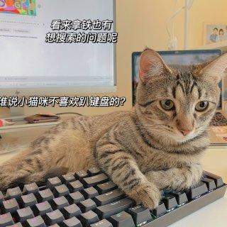 学习Plog CMU码农日常赶due的一...